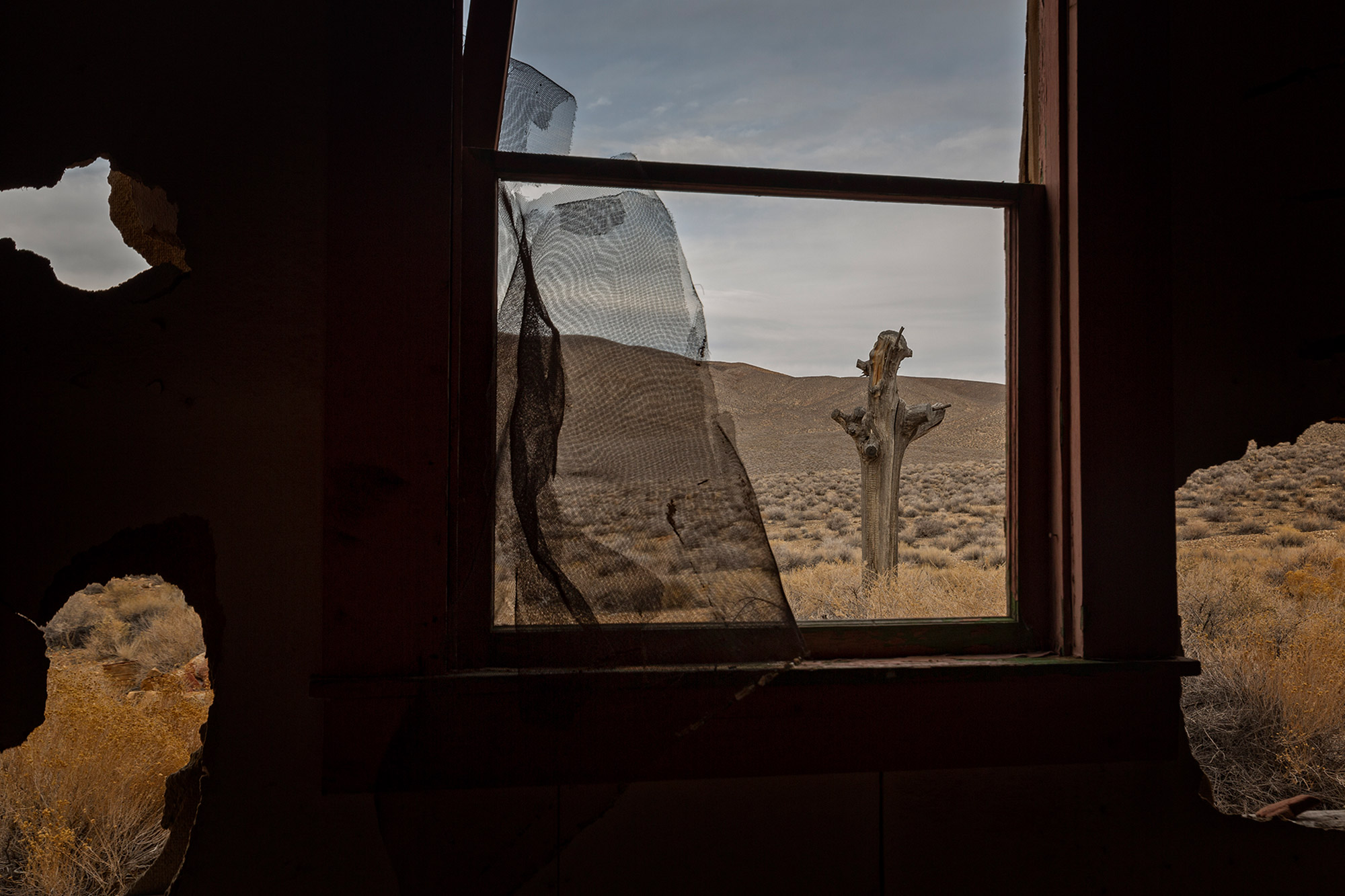 Abandoned house windows with catcus Death Valley-Desert View
