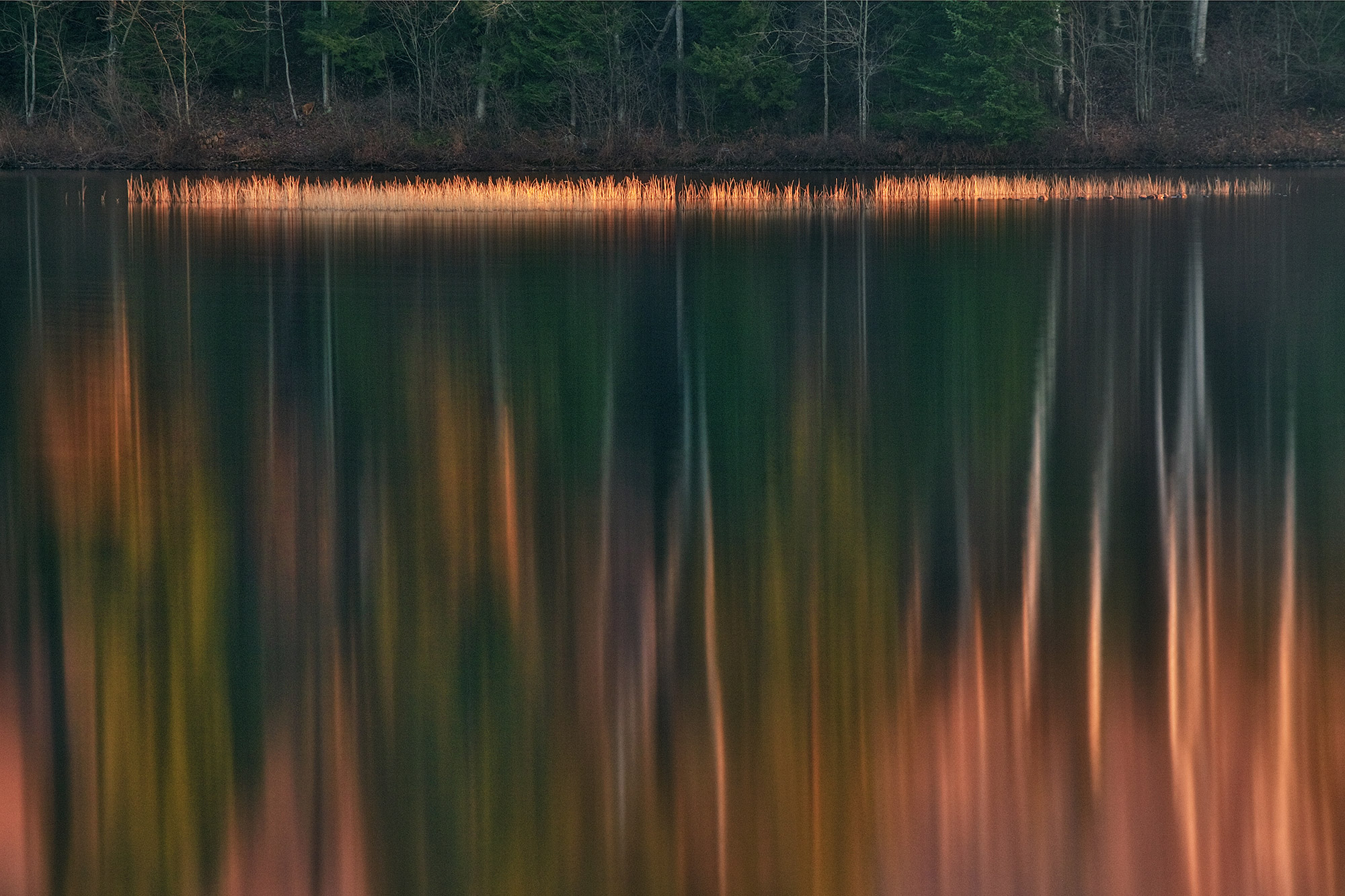 Fall color reflections on lake in Vermont-Blaze