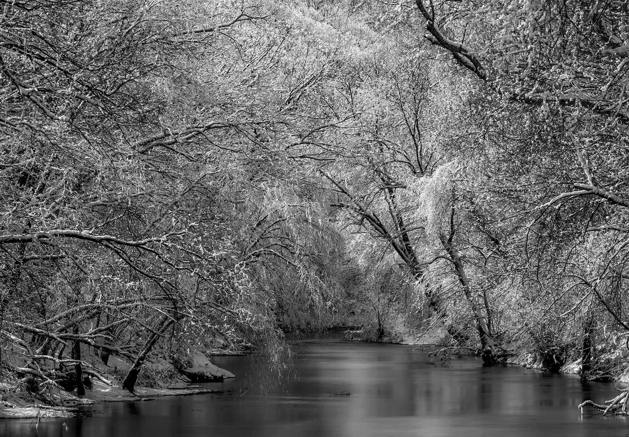 Snow covered trees on river New Jersey-Winter Wonderland